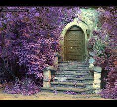 Dream front door