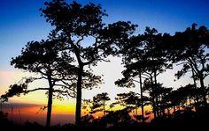 อุทยานแห่งชาติภูกระดึง เลย http://goo.gl/0VYtBL