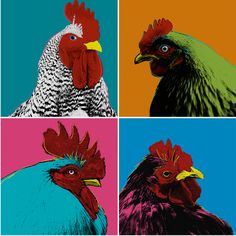 Pop Art Chickens Fabric - Andy's Flock By Lellobird - Chickens Farm Animal Retro Pop Art Colorful Cotton Fabric By The Metre by Spoonflower Minky Fabric, Cotton Twill Fabric, Cotton Canvas, Chicken Quilt, Retro Pop, Double Gauze Fabric, Flocking, Farm Animals, Surface Design