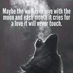 Maybe the wolf is in love with the moon and each month it cries for a love it will never touch.