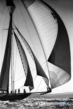 Blowin' In The Wind, Sharp Photo, Classic Yachts, Sea Photography, Remo, Sailing Outfit, Nautical Design, Sail Away, Submarines