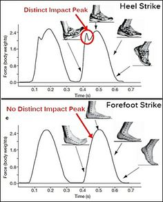 Running injuries are multi-factorial, but experts believe impact peak at heel strike is a global indicator for injury development http://runforefoot.com/heel-strikers-injury-prone/