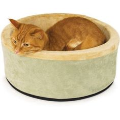 K Thermo-Kitty Bed, Green
