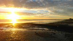 Sunrise over the mudflats Four Square, Sunrise, Celestial, Beach, Outdoor, Art, Outdoors, Art Background, The Beach