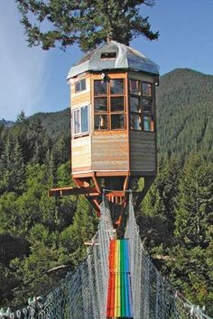 Tree house observatory with rainbow bridge in Cedar Creek, Washington Bungalow, Cool Tree Houses, Tiny Houses, Doll Houses, Unusual Hotels, Cedar Creek, In The Tree, Washington State, Architecture Details