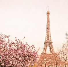 Eiffel tower in Paris, France Paris In Spring, Springtime In Paris, Paris 3, I Love Paris, Pink Paris, Dream Vacations, Vacation Spots, Places To Travel, Places To See