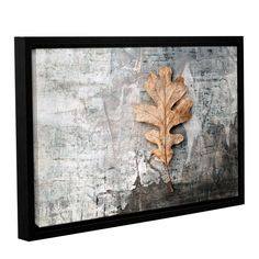 Still Life Leaf by Elena Ray Gallery-Wrapped Floater-Framed Canvas