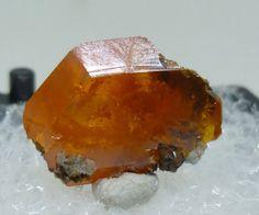 Wulfenite Crystal – Red Cloud Mine, Arizona, USA