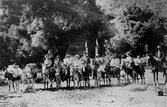 Pack train to Switzer's Camp in Glendale, circa 1910. Switzer's Camp was the brainchild of Commodore C. P. Switzer, Los Angeles carpenter and former plainsman, who established the resort in the early 1880s. Glendale Central Public Library. San Fernando Valley History Digital Library.