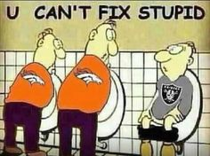 Haha pretty much.. Can't fix raiders stupidness...