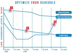 best times for various tasks @wired