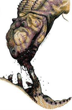 Majungasaurus crenatissimus, art by Demetrios M. Vital
