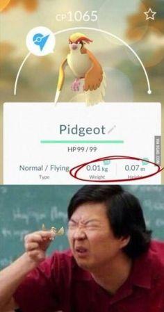 Pidgeot.