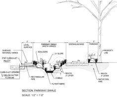Section of bio-swale