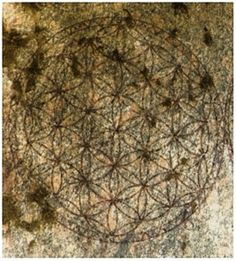 The Flower of Life set in stone  at the Temple of Osiris at Abydos, Egypt