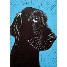 'The Eyes Have It' by Printmaker Mary Collett.  Blank Art Cards By Green Pebble. www.greenpebble.co.uk