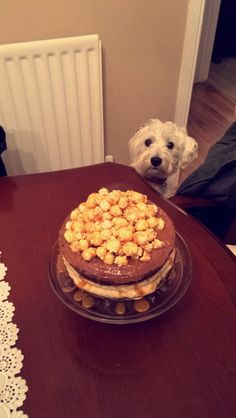 Toffee popcorn cake with a dog lurking in the back ground