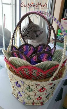 My Cassistant and his Q.C job #macrame   #basket   #handmade   #handcrafted   #cat   #catlovers   #catholic   #caturdayeveryday #CraftingMode
