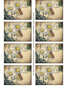 Free Printable - Daisy Postcard Tags