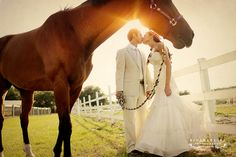 bridal with horse. I'd be holding the lead thank you. Hehe