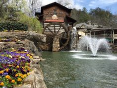 The 8 Best Things About Dollywood (and remember, Travel Detailing can get YOU there! JLazoff@traveldetailing.com)