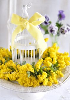 Yellow & white - mimosa decorated  birdcage...