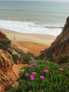Spring in Algarve, Portugal