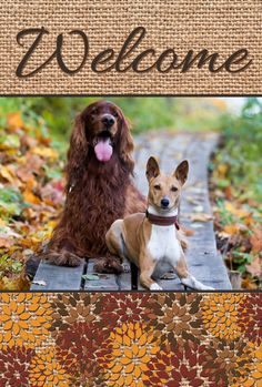 Welcome all with a custom flag for fall: just add your photo for a truly personal gift. Add your text for free!