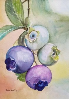 Original Watercolor Painting, Fruit Painting, Kitchen Painting, Kitchen ART, HandmadeOriginal (disambiguation) Originality is the quality of novelty or newness in created works. Original or The Originals may also refer to: Watercolor Fruit, Fruit Painting, Watercolor Flowers, Watercolor Paper, Watercolor Projects, Painting & Drawing, Watercolor Paintings, Watercolor Artists, Guache