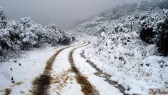 snowfall, Urupema, Santa Catarina, Brasil
