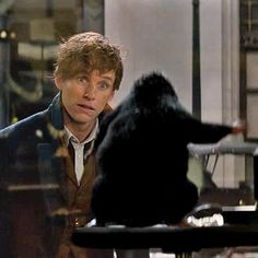 Movies: Fantastic Beasts and Where to Find Them conjures up action-packed new trailer