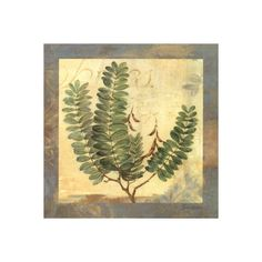 Leaf Botanicals II Wall Art Print (395 RUB) ❤ liked on Polyvore featuring home, home decor, wall art, home wall decor, wall coverings, leaves wall art, wall-cover and wall posters