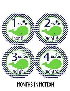 Baby Boy Monthly Milestone Stickers Style #134