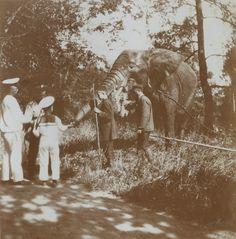 Tsar Nicholas II e seu filho Tsarevich Alexei Nikolaevich observando um elefante em Tsarskoye Selo em 1914.