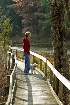 Hiking Tips for Your Pets
