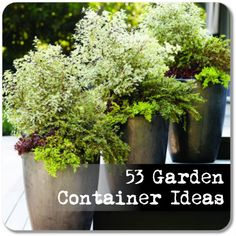 53 Garden Container Ideas. A Range of Garden Pots that will suit any plant you can think of.