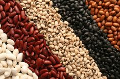 Beans & Fertility: Women who eat a lot of PLANT based protein are substantially less likely to have trouble trying to conceive