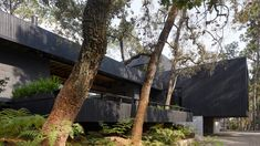 Magaldi Studio sourced the cladding of this boxy house locally, including the cedar that was charred black and the stone from a quarry in nearby Acatlán. Jacuzzi, Basement Floor Plans, Charred Wood, Dark House, Exposed Concrete, Ground Floor Plan, Roof Plan, Patio, House Entrance