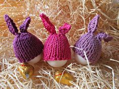 The set consists of three different colored hats for Easter eggs. They have long ears bunny , are bright and positive. Decorate your table for the holiday and create the perfect mood. They can be used in everyday life. Knitted by hand. Can serve as a gift, because they are very