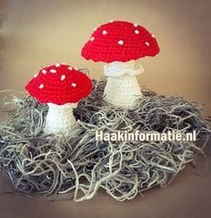 A free crochet pattern of a red mushroom with white dots. Do you also want to crochet this mushroom for coming fall? Read more about the pattern Crochet Amigurumi, Amigurumi Patterns, Crochet Toys, Crochet Patterns, Champignon Crochet, Fruits En Crochet, Crochet Mushroom, Dots Free, Crochet Fall