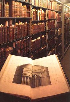 booksnbuildings:  Thomas Jefferson's books. The present US library of congress started with this private collection, bought by Madison. (via)