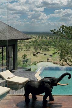 Bilila Lodge Kempinski, Tanzania, Kenia, Africa.