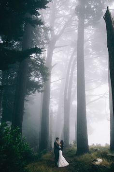 Shoda Love Photography...gorgeous shot with the fog