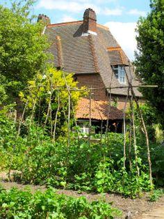 the kitchen garden - trellis with branches