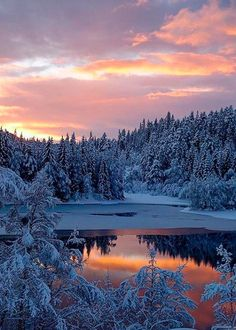 Vintervann i solnedgang 💜 Winter Sunset, Winter Scenery, Winter Images, Winter Pictures, Beautiful Scenery Pictures, Beautiful Landscapes, Winter Photography, Nature Photography, Sunset Landscape
