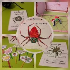 Very Busy Spider book activities All About Me Preschool, Fall Preschool, Preschool Books, Preschool Themes, Preschool Science, Hands On Activities, Kindergarten Activities, Book Activities, Sequencing Activities