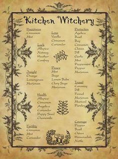 Kitchen witchcraft for homemade Halloween magic book. - Everything witchy ⭐ï . can find Hallo. Halloween Spell Book, Halloween Spells, Halloween Magic, Homemade Halloween, Wiccan Spell Book, Wiccan Witch, Spell Books, Magic Herbs, Herbal Magic