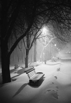 Cold winter dreams by Ransky park landscape beauty winter cold night light cityscape film beautiful bench snow konica mood Kyiv K Winter Szenen, Winter Magic, Winter Night, Cold Night, Winter Photography, Nature Photography, Travel Photography, Snow Scenes, Winter Pictures