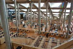 アレクサンドリア図書館(エジプト) | 世界の図書館.com