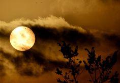 Venus and the Sun.